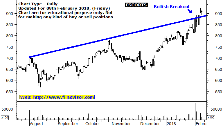 Escorts share market forecast